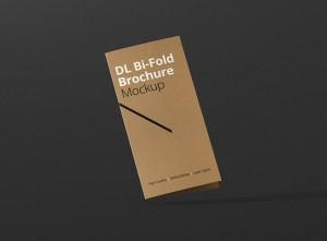 04_dl_bifold_brochure_closed_frontview