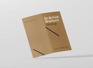 07_dl_bifold_brochure_open_back_frontview