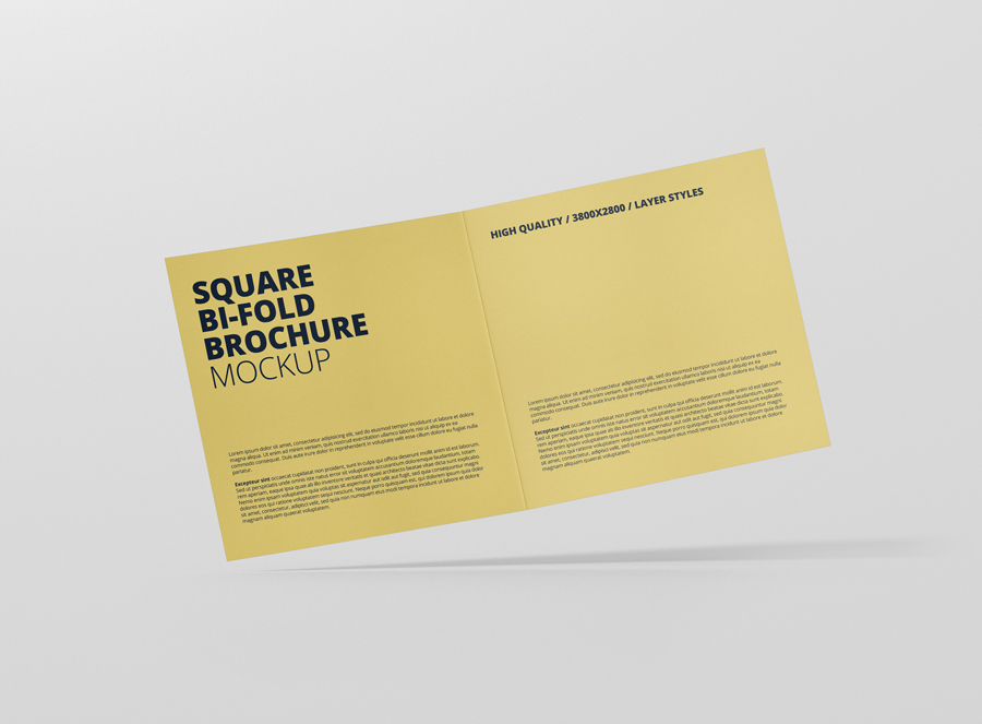 10_square_bifold_brochure_open_frontview