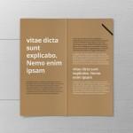 17_dl_bifold_brochure_open_top