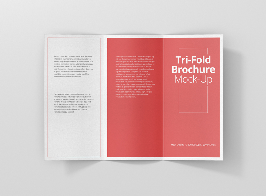 dl tri fold brochure mockup premium and free mockups for your