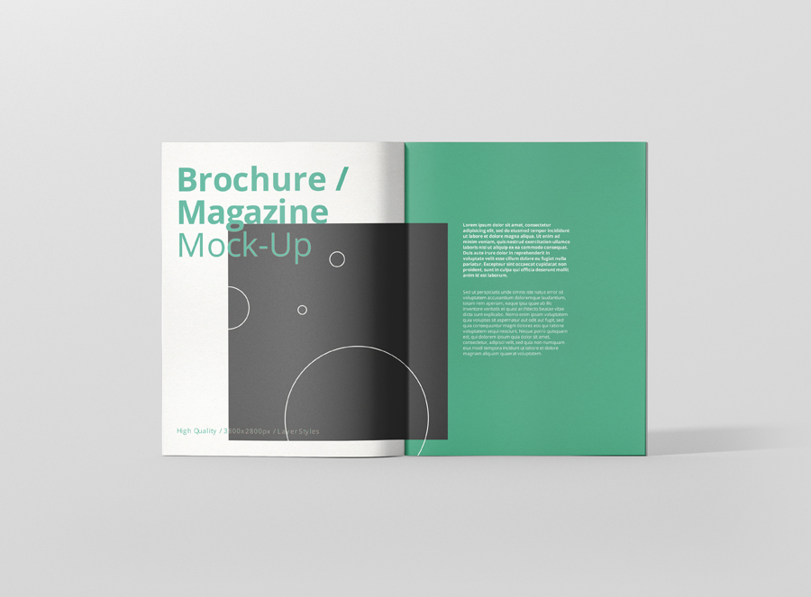 05_brochure_magazine_us_letter_open_frontview
