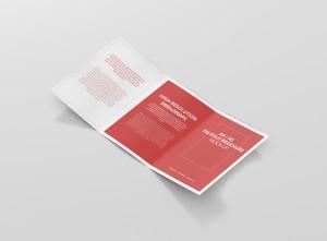 08_a4_a5_trifold_brochure_open_side