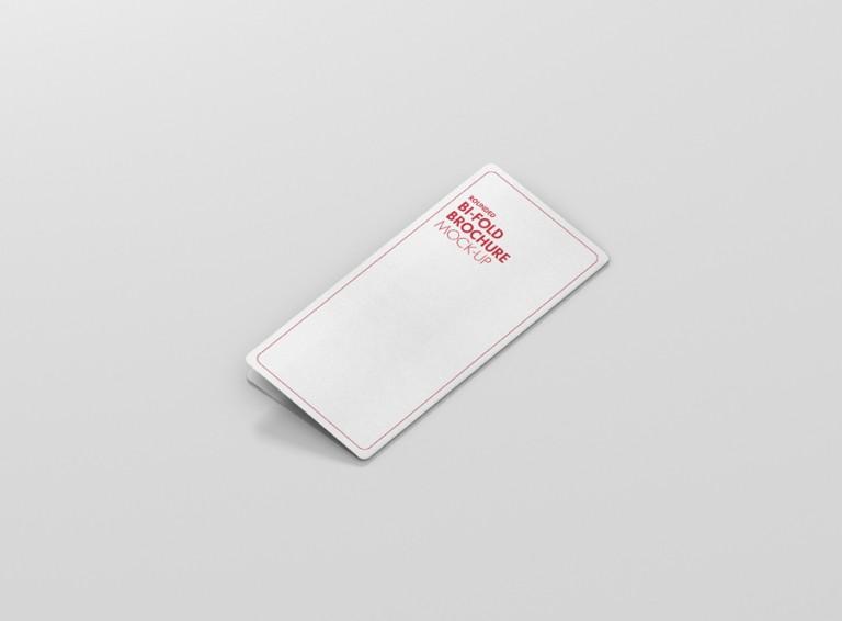 01_dl_bifold_brochure_rc_back_side