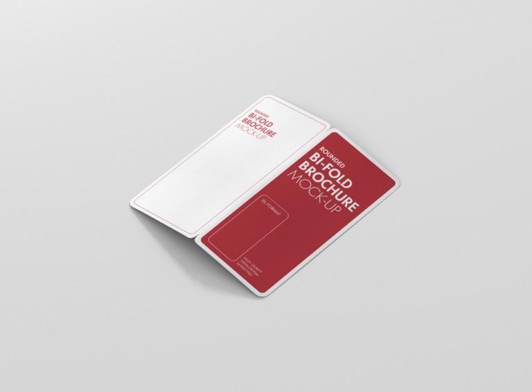 Dl Bifold Brochure Mockup Rectangle