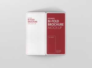 06_dl_bifold_brochure_rc_open_back_top