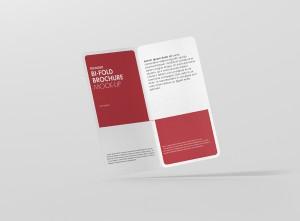 07_dl_bifold_brochure_rc_open_frontview