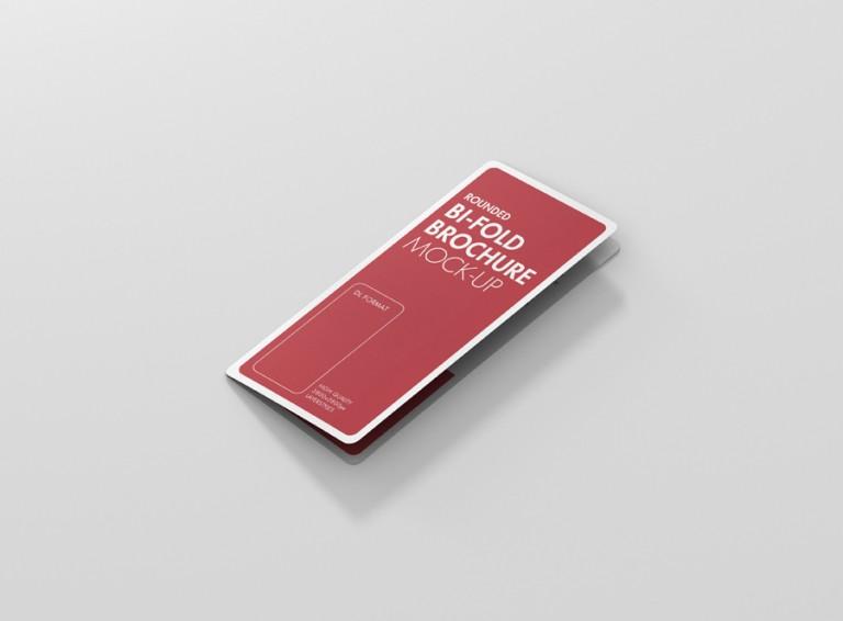 10_dl_bifold_brochure_rc_side