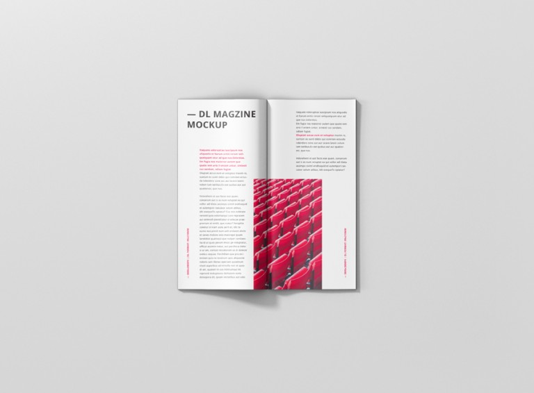 08_brochure_magazine_mockup_dl_top_2